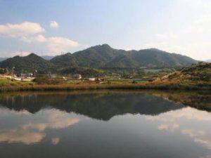 奥山雨山自然公園1