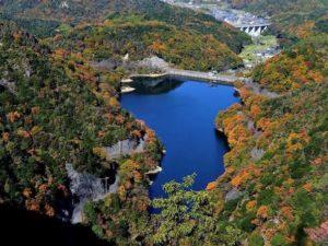 奥山雨山自然公園2