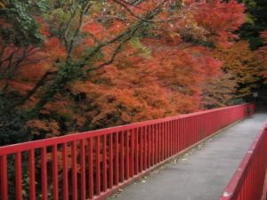 枚岡公園2