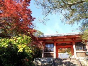 龍泉寺庭園1